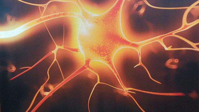 neurona roja, exprime tus neuronas